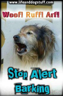 Alert Barking - Stop Barking Dog! - Woof! Woof! Ruff! Arf!