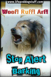 Alert Barking - Stop Barking Dog! - Woof! Woof!