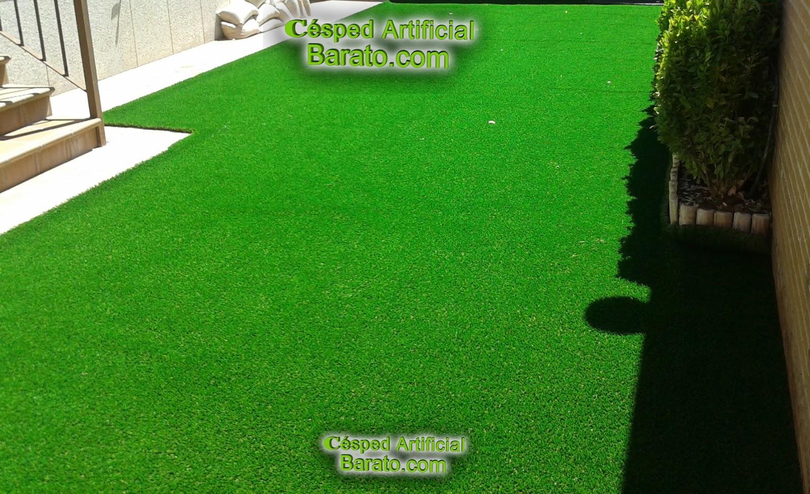 Ofertas c sped artificial barato c sped artificial jardines fibra concava - Jardin vertical artificial barato ...