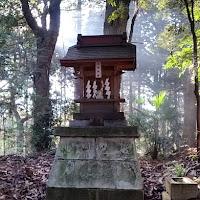 人文研究見聞録:麻賀多神社(成田市台方) [千葉県]