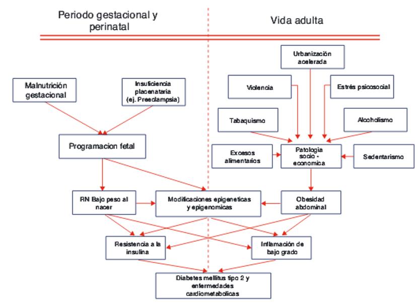 insuficiencia placentaria y diabetes gestacional