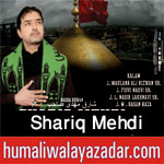 http://www.humaliwalayazadar.com/2017/09/shariq-mehdi-nohay-2018.html