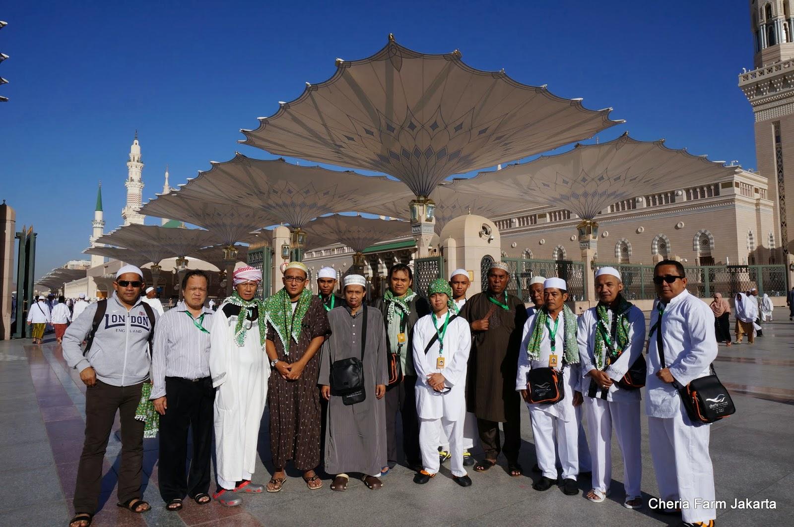 Masalah Penyelenggaraan Ibadah Haji Perlu Dibenahi