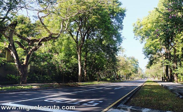Avenidas-Nusa-Dua
