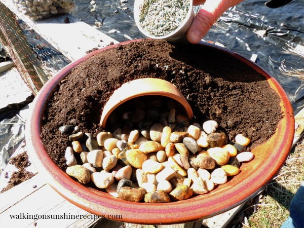 Add the stones and then the grass seed for the Resurrection Garden from Walking on Sunshine