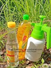 Racun Organik Buatan Sendiri ::: Hapuskan Lalang Dengan Cepat