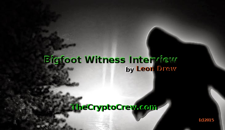 Bigfoot Witness