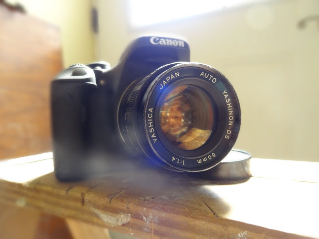 Canon 600D Paired with Yashica Yashinon 50mm Lens