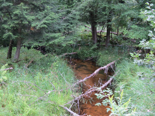 Ruby Creek