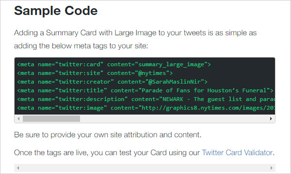 Copy code for twitter card on twitter deveopers site