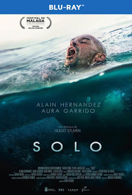 Solo 2018 BD25 Spanish