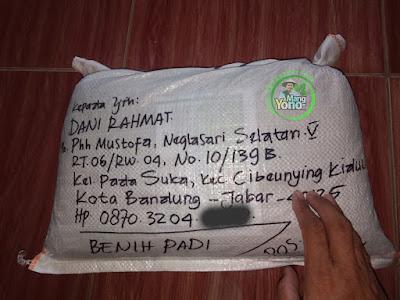 Benih Padi TRISAKTI Pesanan  DANI RAHMAT Bandung, Jabar    (Sesudah di Packing)