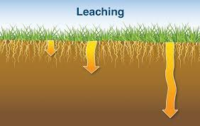 Leaching is removal of materials in solution or suspension downwards as water move vertically through the soil body by force of gravity.