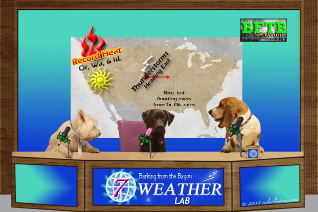 Barking from the Bayou Weather Lab Report