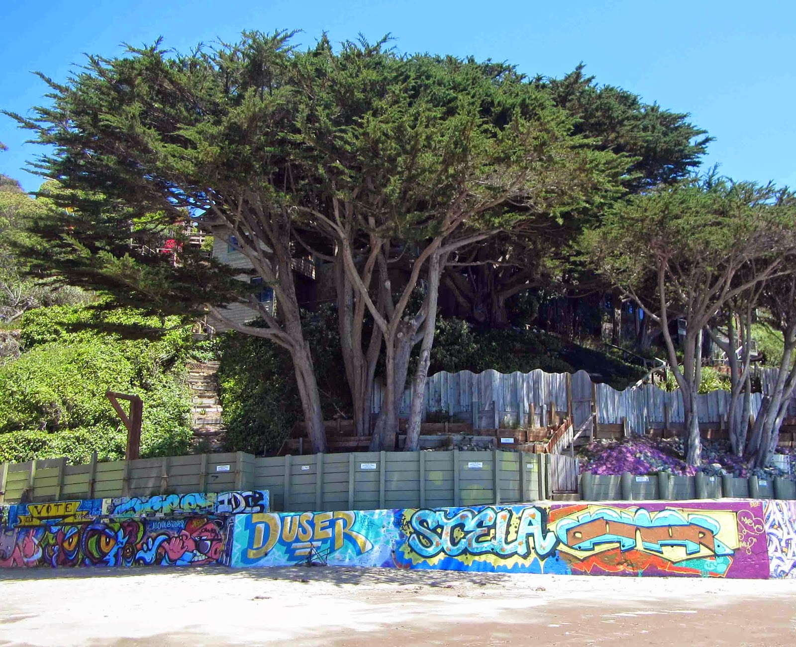 bb9f1c9c672 The Bolinas compromise on graffiti  stick with the low walls only!