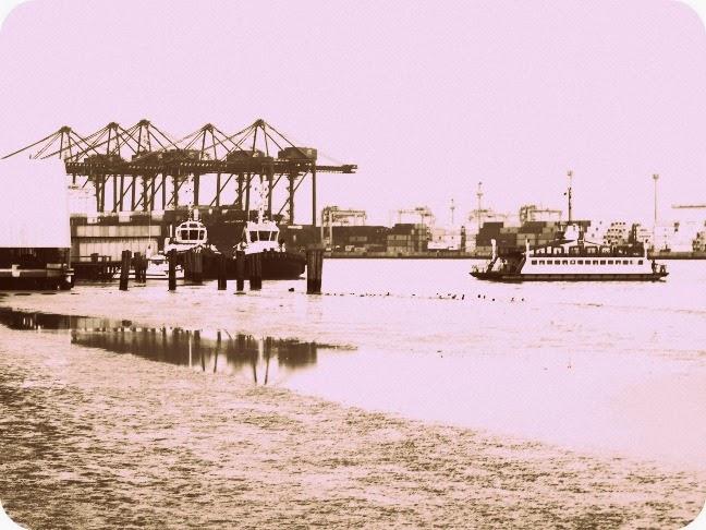 Porto de Itajaí junto ao Rio Itajaí-Açu.