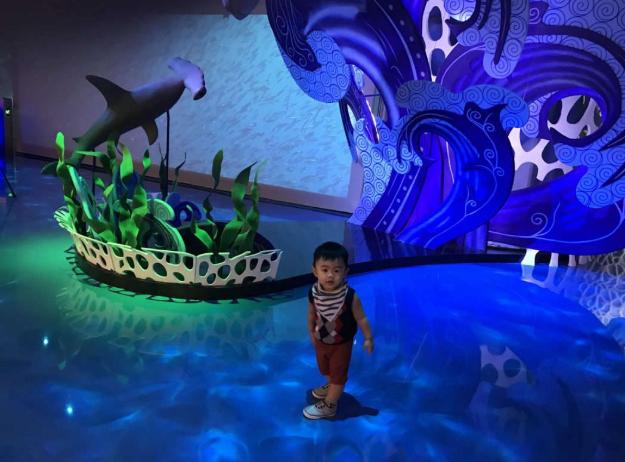 Tempat Rekreasi Indoor Jakarta Aquarium