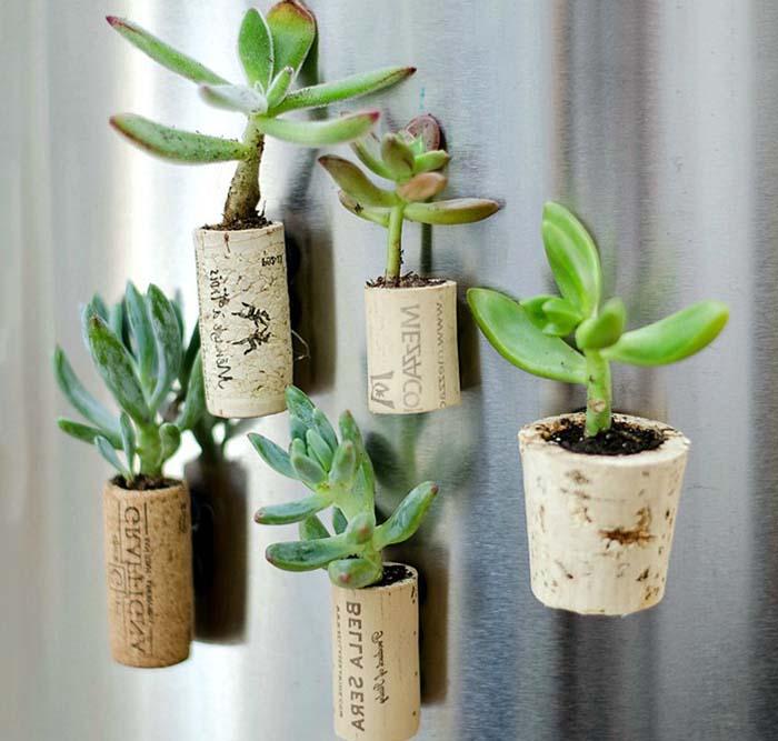 buzdolabı için minyatür saksılarda bitkiler yapımı