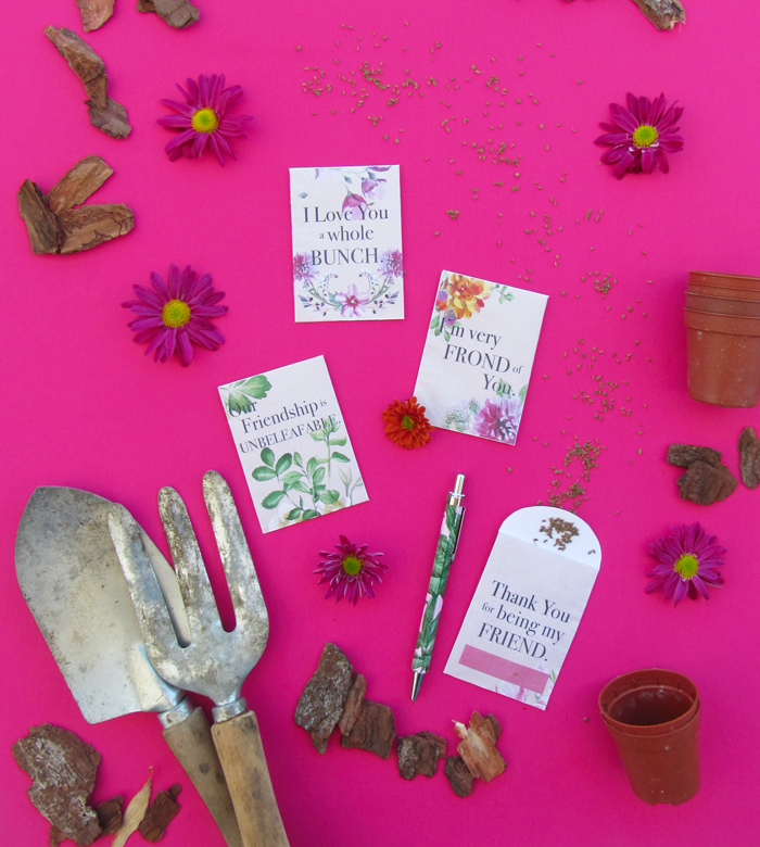 Free printable plants flowers seeds envelopes for Valentine's Day, Galentine's Day, crafts, diy, do it yourself, friendship