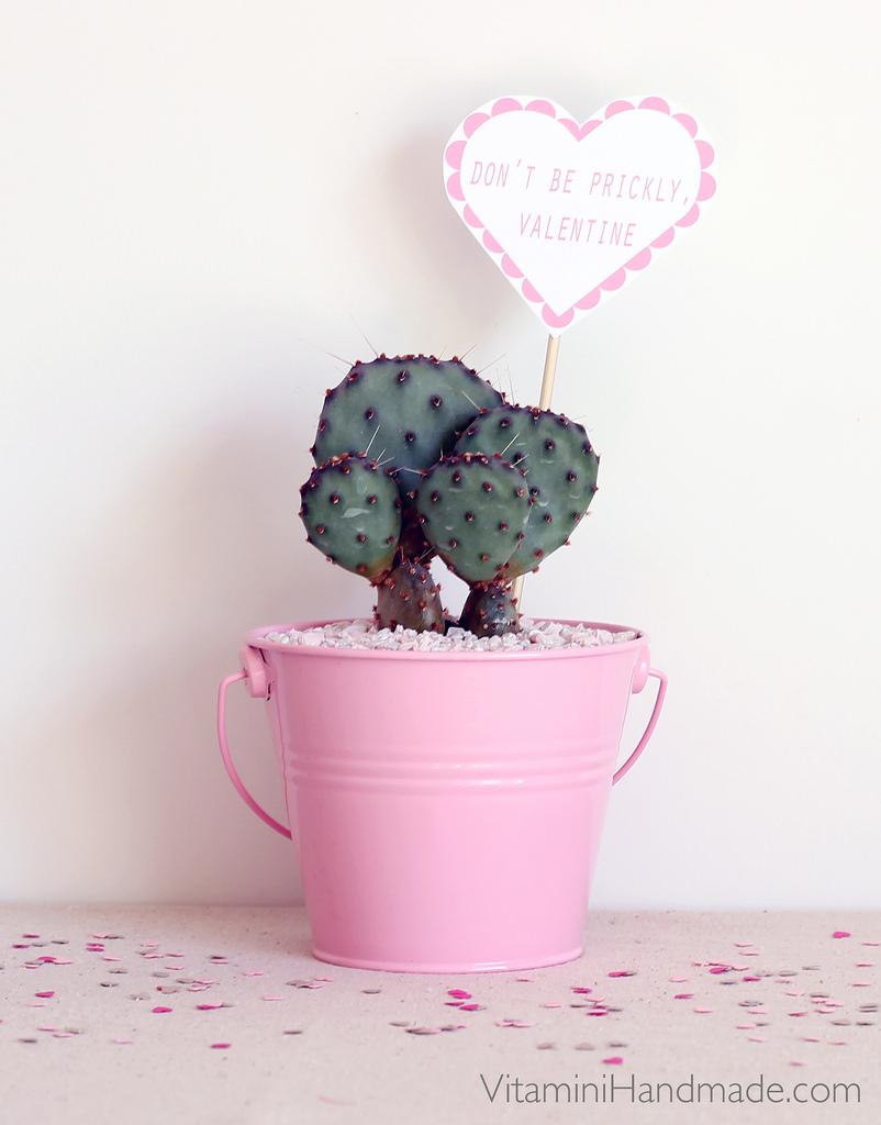 Cactus Valentine