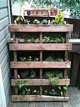 Kids & Giggles Vertical Pallet Garden Project