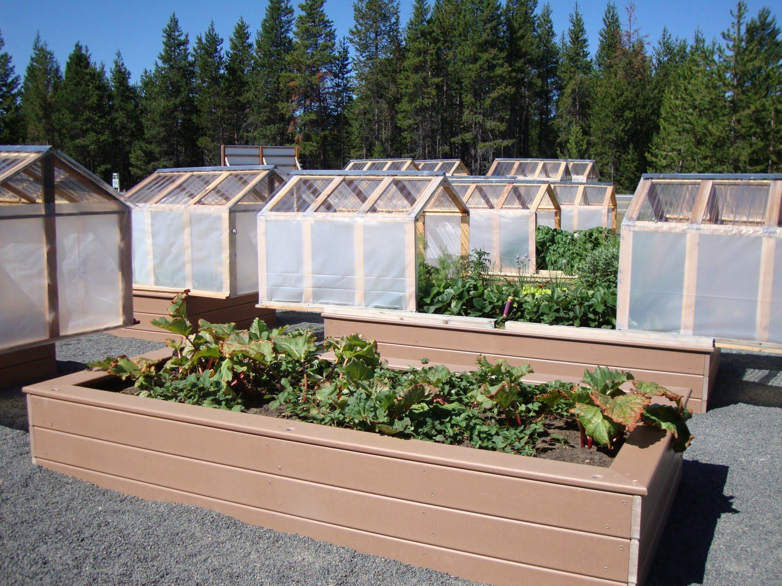 Danger Garden Mini Greenhouses Or Raised Beds Both