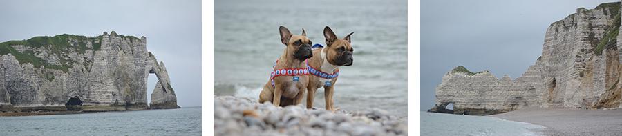 Hundeblog Genki Bulldog - Mit Hunden in der Normandie - Das L'Aiguille d'Étretat