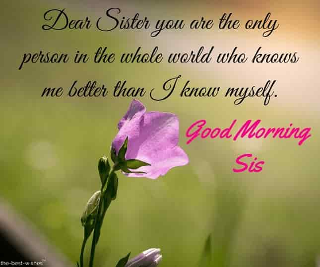 good morning beautiful sister quotes
