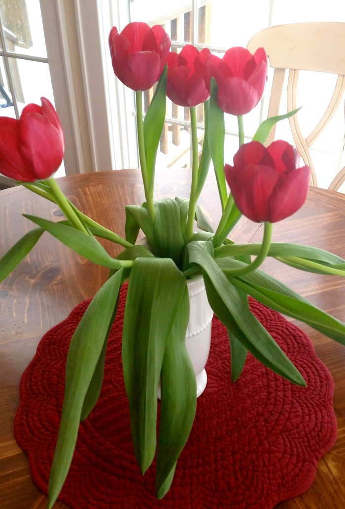 Red Tulips In Kitchen