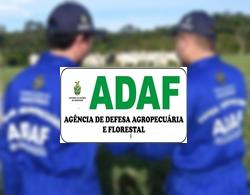 Concurso ADAF AM 2018