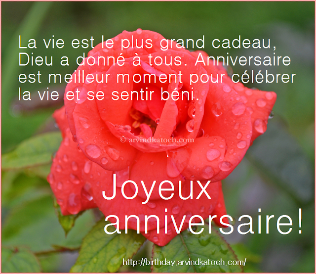 Happy Birthday Card, French Card, Joyeux anniversaire, carte,