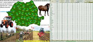 Topul județelor după numărul de cai și, implicit, de căruțe