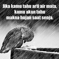 Gambar Dp Bbm Hujan arti hujan dan air mata