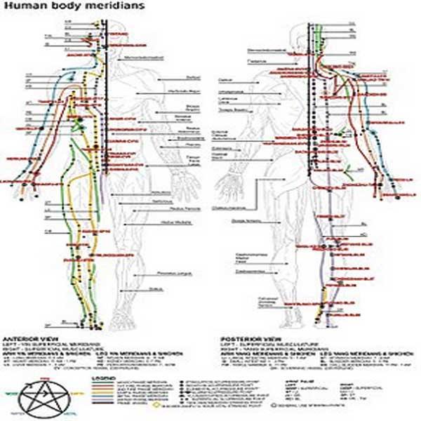 Meridian, Titik Meridian, Akupunktur, Titik Akupunktur