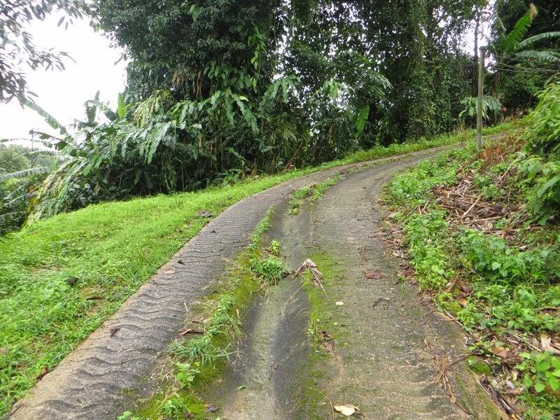 Тайская дорога в гору