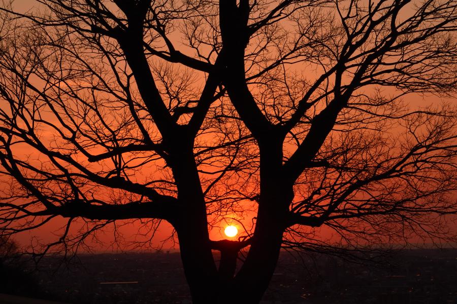 3月の大乗寺丘陵公園での夕日