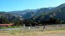 Oso Horse Ranch Washington