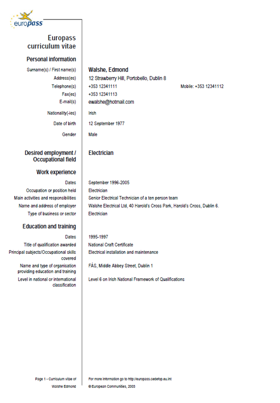 model curriculum vitae in limba germana