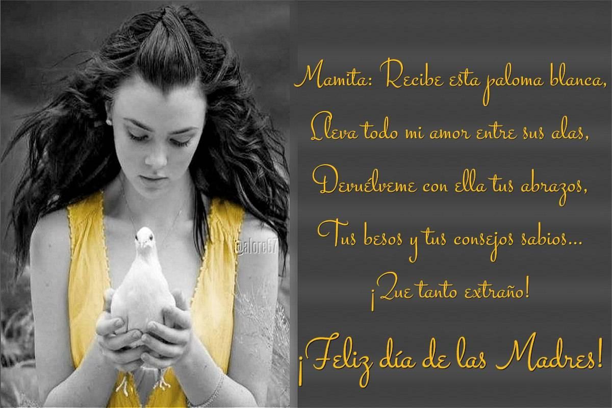 Tarjetas De Feliz Dia De Las Madres Hasta El Cielo Bloggergifs