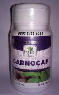Jual Obat Alami Tumor Kanker CARNOCAP HPAI Asli Herbal Original