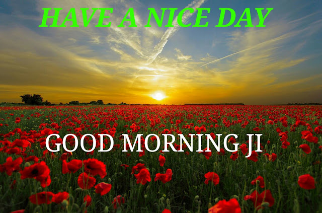 EXCELLENT 4 GOOD MORNING