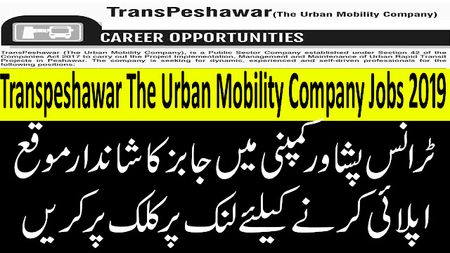 Transpeshawar The Urban Mobility Company New Jobs 2019