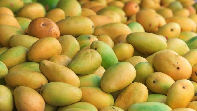 Eight Amazing Health Benefits Of Mangoes