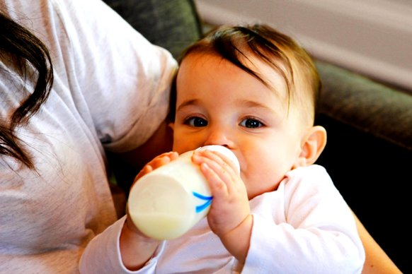 bayi minum susu dutch baby 6-12 bulan