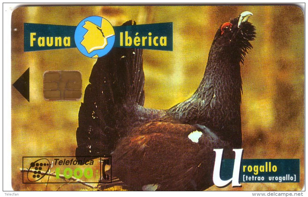 Tarjeta telefónica Urogallo (Tetrao urogallus)