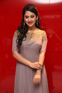 Mia George Looks Beautiful at Yaman Movie Audio Launch Pics 019.jpg