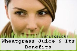 https://foreverhealthy.blogspot.com/2012/05/wheatgrass-juice-its-spectacular.html#more