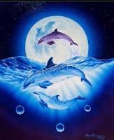 Dolphin SPA