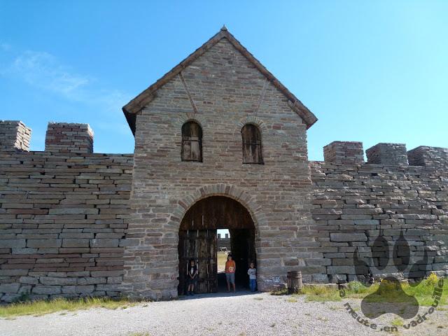 Suede-ile-Oland-fort-eketorp-louveteaux