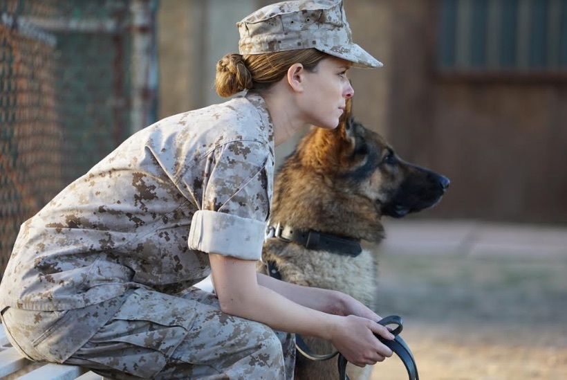 Descargar Megan Leavey hd Castellano English Latino